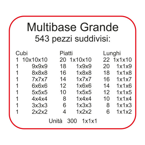 N07-multibase- Dida