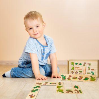 Domino animali del passato i dinosauri nell'immaginario dei bambini - Dida